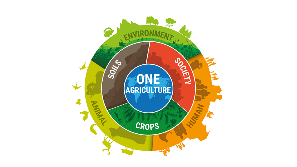One Agriculture - REAP 2019